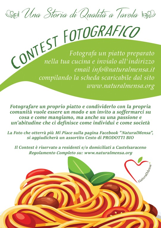 contest-web